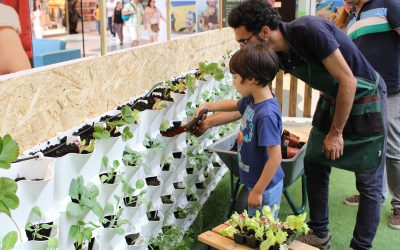 Horticulture Workshops for Children and Grown-Ups – Vertical Kitchen Garden